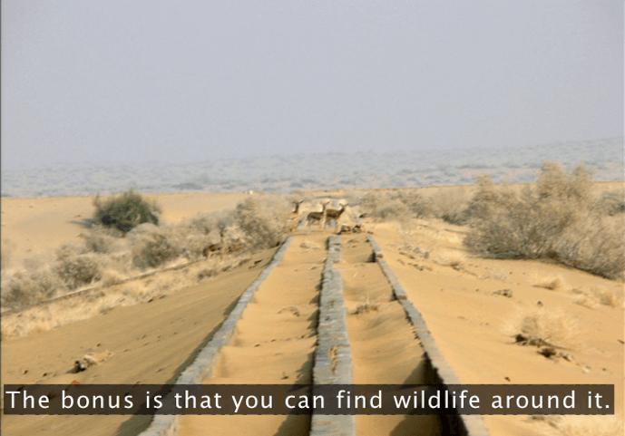 Anupam Mishra, Canal, Jaisalmer, Sand,