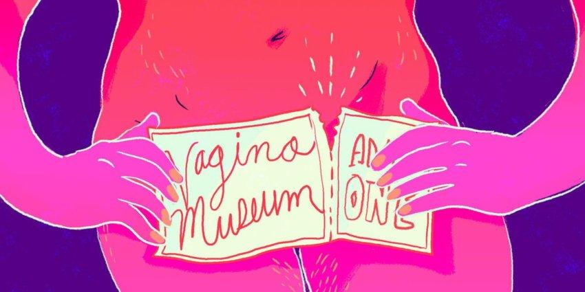 vagina, vagina museum, how does vagina look, is my vagina normal, penis museum, vagina museum in london, vagina monologues, vagina awareness, inspirational, positive news, constructive news, constructive journalism