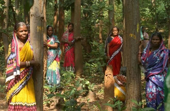 ओडिशा, बलरामपुर, झींकारगाड़ा, धेनकनाल, चिपको मूवमेंट, चिपको अभियान, Brewery, Odisha, Jhinkargada, Dhenkanal, Women Power, Movement, Odisha Government, Naveen Patnaik,